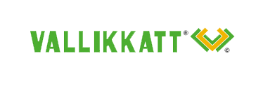 website design kottayam